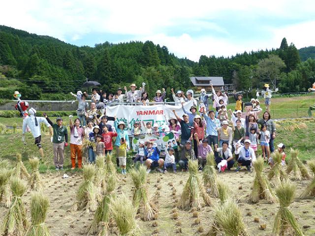 田んぼで稲刈り体験