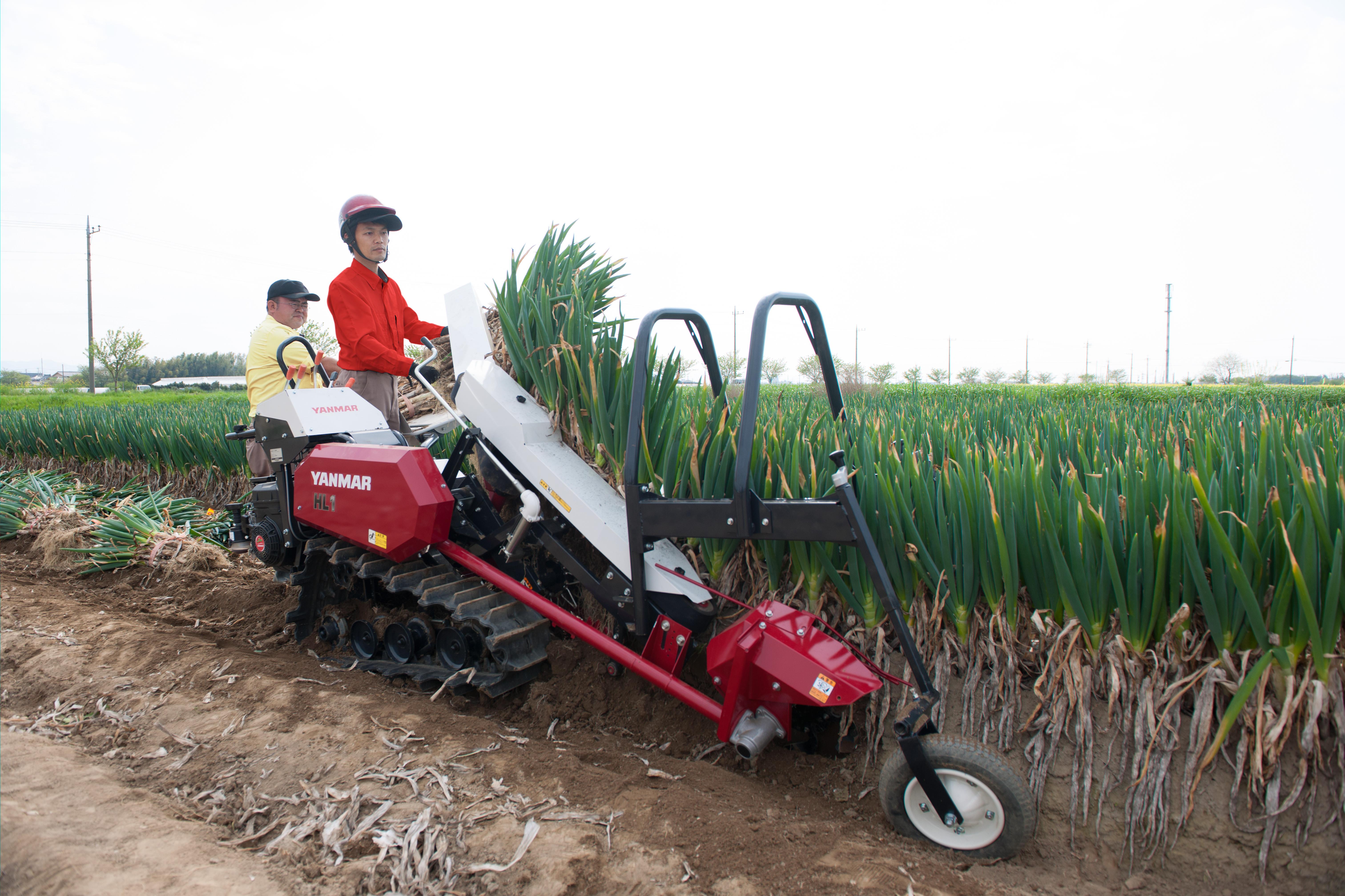 一連の収穫作業の軽労化