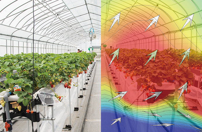 Cultivation & Environment Data Visualization
