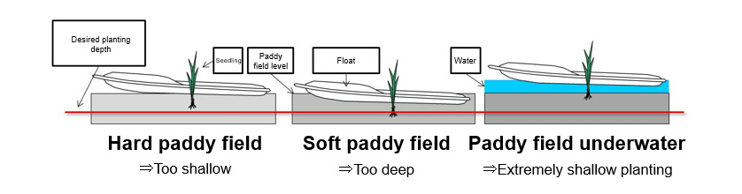 Fig. 4 Effect of Paddy Field Conditions on Level of Float Relative to Paddy Field and Resulting Planting Depths