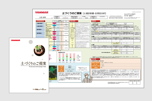 Your Soil Test Report