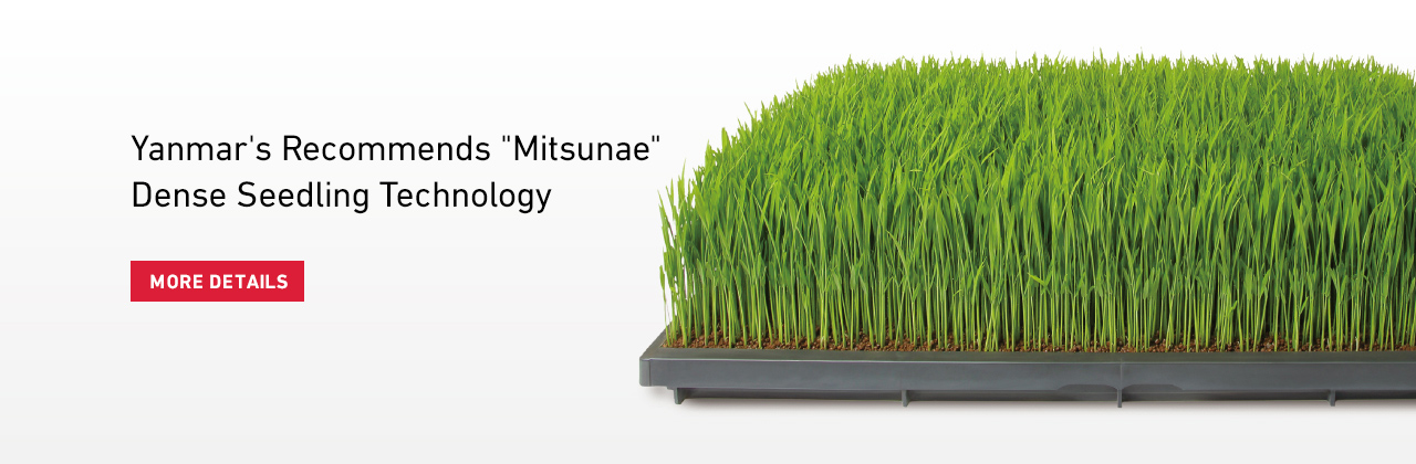 Yanmar's Recommends Mitsunae Dense Seedling Technology