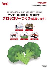 ブロッコリー機械化システム(北海道版)