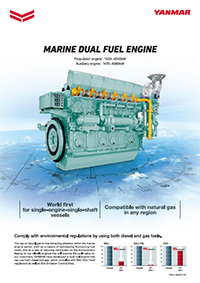 Marine Dual Fuel Engine